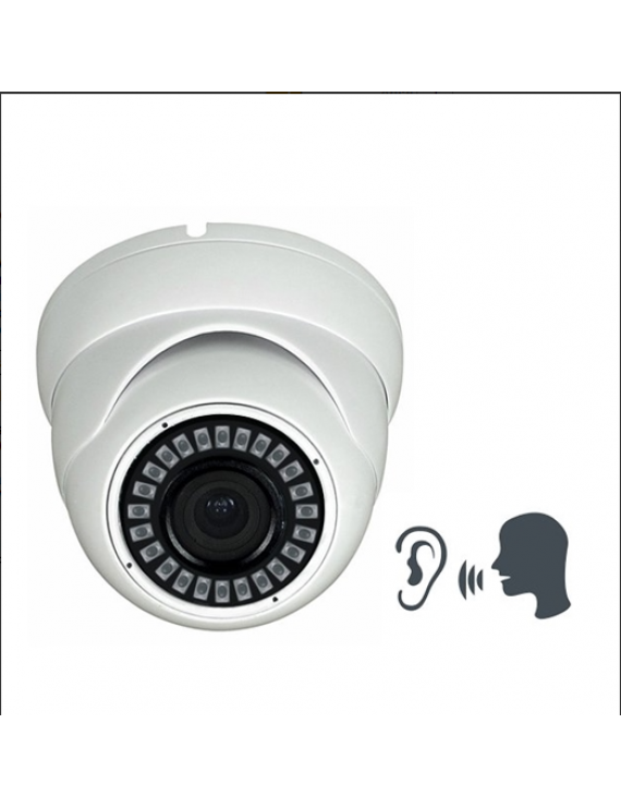 Dome Camera 4MP POE MIC